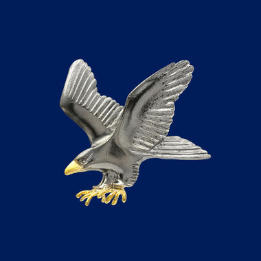 Eagle, brooch